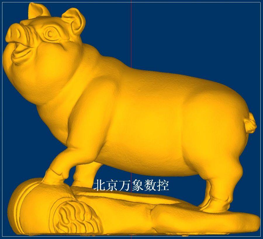 12猪.jpg