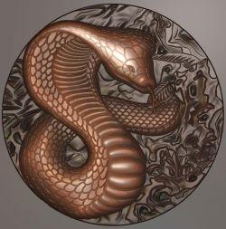 圆蛇灰度图